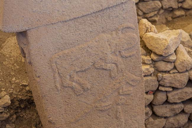"Gobekli Tepe Turkish for ""Potbelly Hill"". This pillar shows a horned bull. (Mehmet/Adobe Stock)"